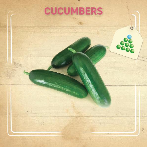 Leaflet - Cucumbers-1