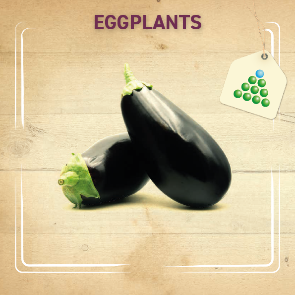Leaflet - Eggplant-1
