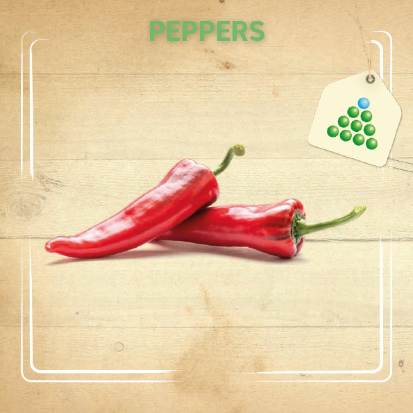 Leaflet - Peppers-3