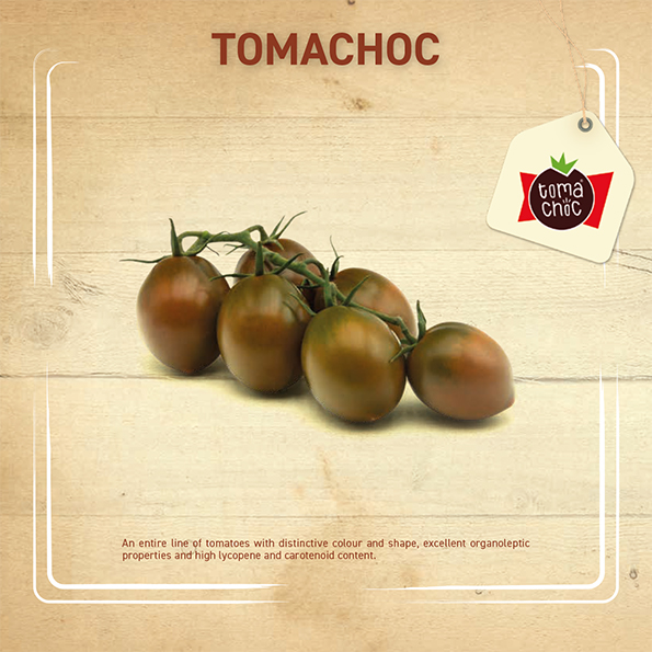 Leaflet – Tomachoc-1