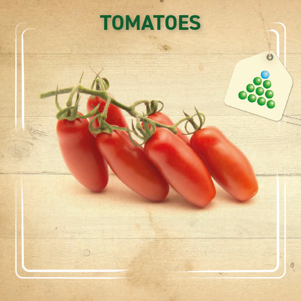 Leaflet – Tomatoes-1