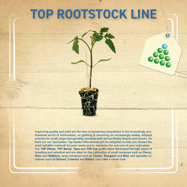 Leaflet - Top Rootstock-1