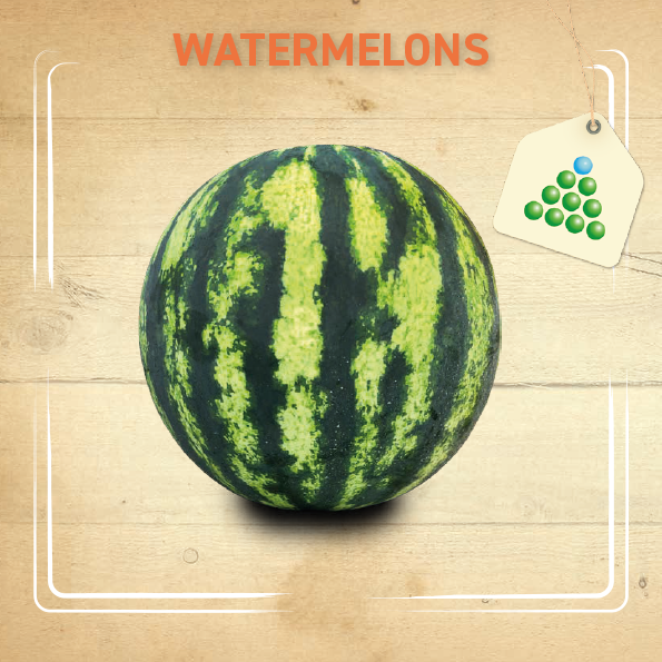 Leaflet – Watermelon-1